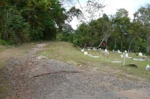 """M"" Section Corozal Cemetery"